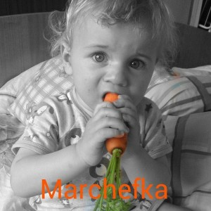 marchefka0